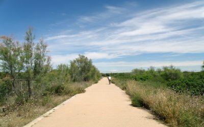 Ruta en bicicleta por el Saler hasta la Albufera